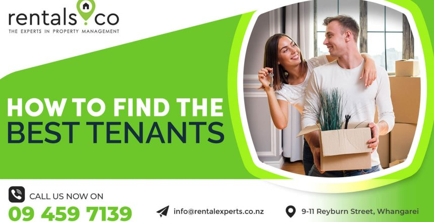 Property Management Whangarei: How to Find the Best Tenants
